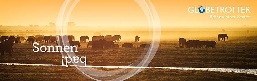 Afrika entdecken