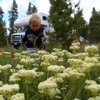 Motorhome-Rundreise mit der Familie in den Rocky Mountains