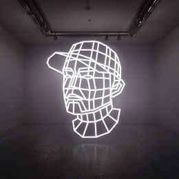 Reconstructed:the Best Of Dj Shadow