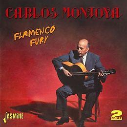 Flamenco Fury