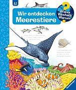 Spiralbindung Wir entdecken Meerestiere von Andrea Erne, Anne Ebert