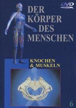Der Körper des Menschen - 06 - Knochen & Muskeln