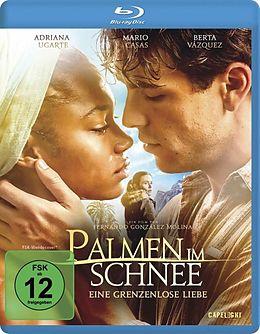 Palmen Im Schnee - Eine grenzenlose Liebe Blu-ray