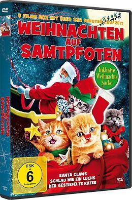Weihnachts Katzenbox Mit Weihnachtsstrumpf