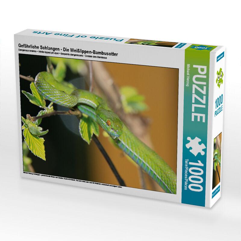 Gefahrliche Schlangen Die Weisslippen Bambusotter Puzzle Online