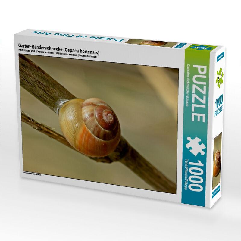 Garten Bänderschnecke Cepaea Hortensis Puzzle Online Bestellen