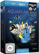 Aquarium 4k - Limited Edition
