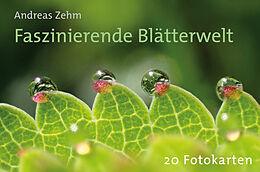 Cover: https://exlibris.azureedge.net/covers/4260/0985/5029/0/4260098550290xl.jpg