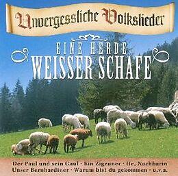 Eine Herde Weißer Schafe -