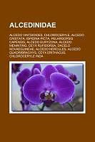 Cover: https://exlibris.azureedge.net/covers/9781/1587/9846/9/9781158798469xl.jpg