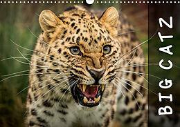 Kalender (Kal) Big Catz (Wall Calendar 2021 DIN A3 Landscape) von Jason Brown