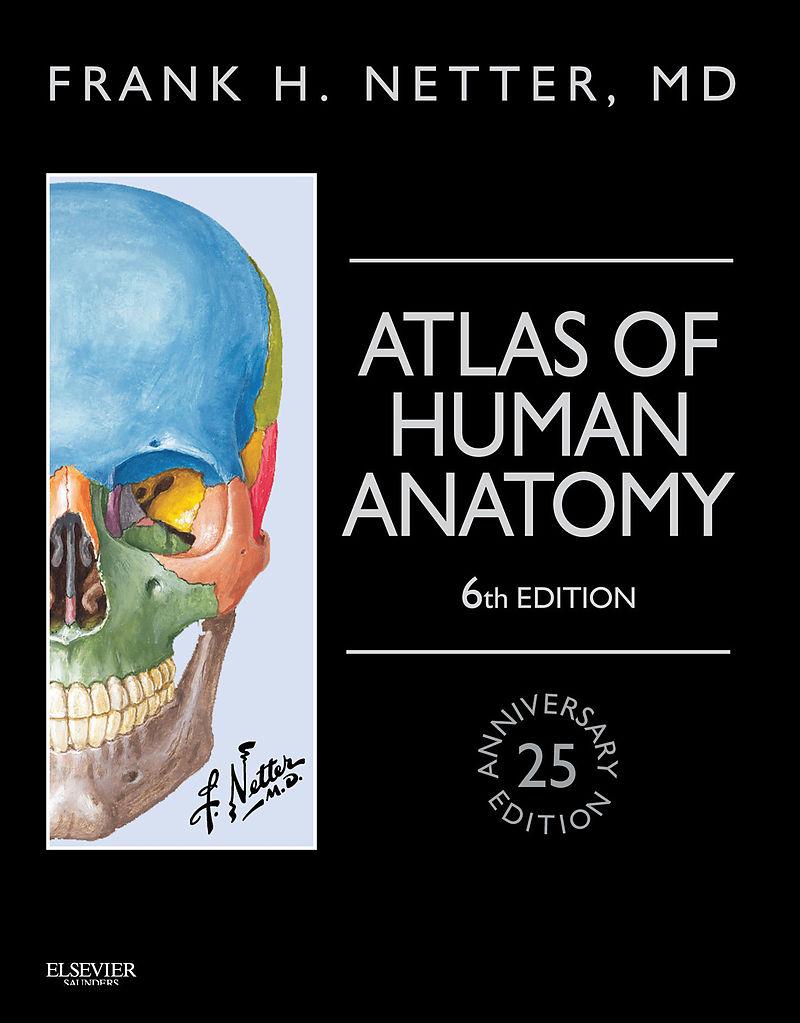 Atlas Of Human Anatomy E Book Frank H Netter Englische E Books