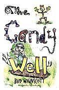 Kartonierter Einband The Candy Well von Bud Wainscott