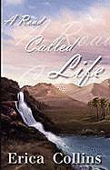 Kartonierter Einband A Road Called Life von Erica Collins