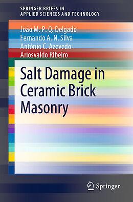 Kartonierter Einband Salt Damage in Ceramic Brick Masonry von João M. P. Q. Delgado, Ariosvaldo Ribeiro, António C. Azevedo
