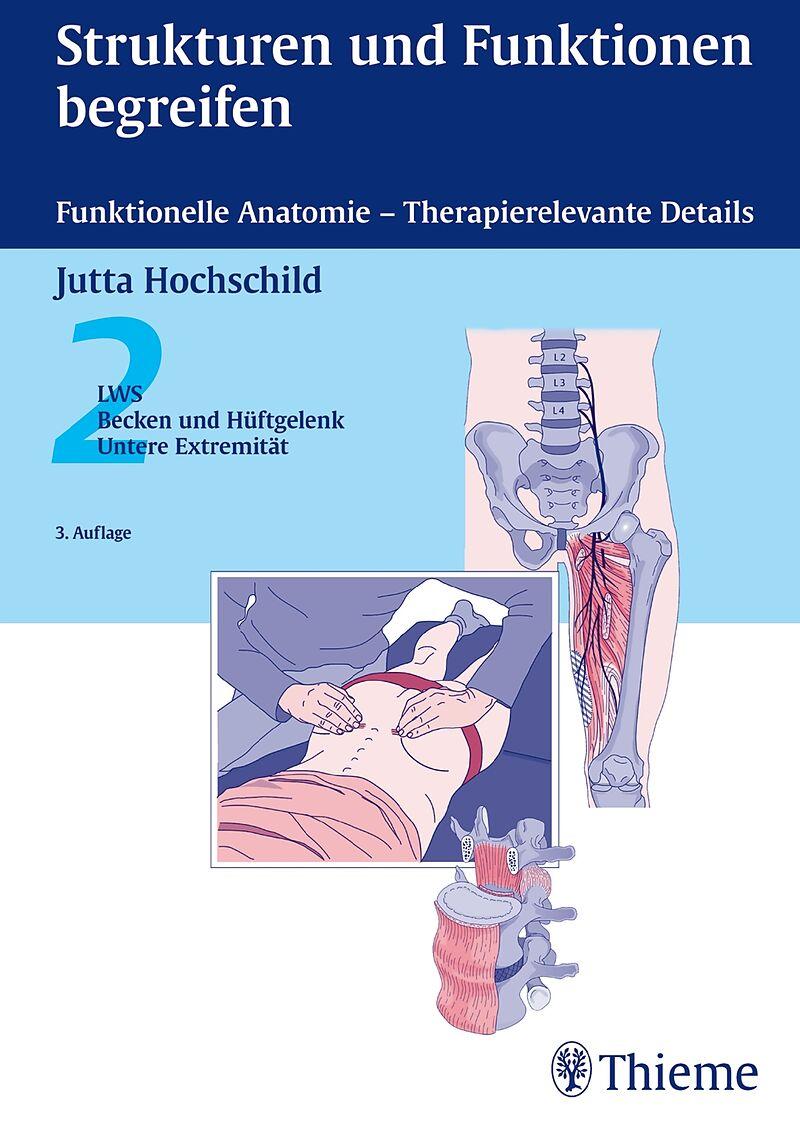 Beste Funktionelle Anatomie Des Harnwege Fotos - Anatomie Von ...