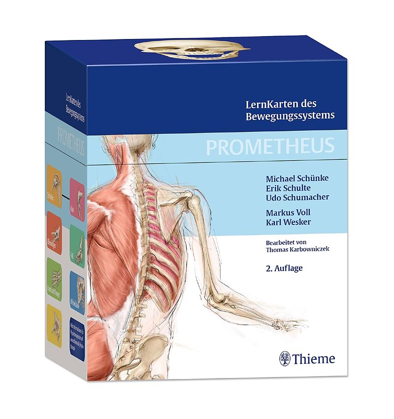 PROMETHEUS LernKarten des Bewegungssystems - Michael Schünke, Erik ...