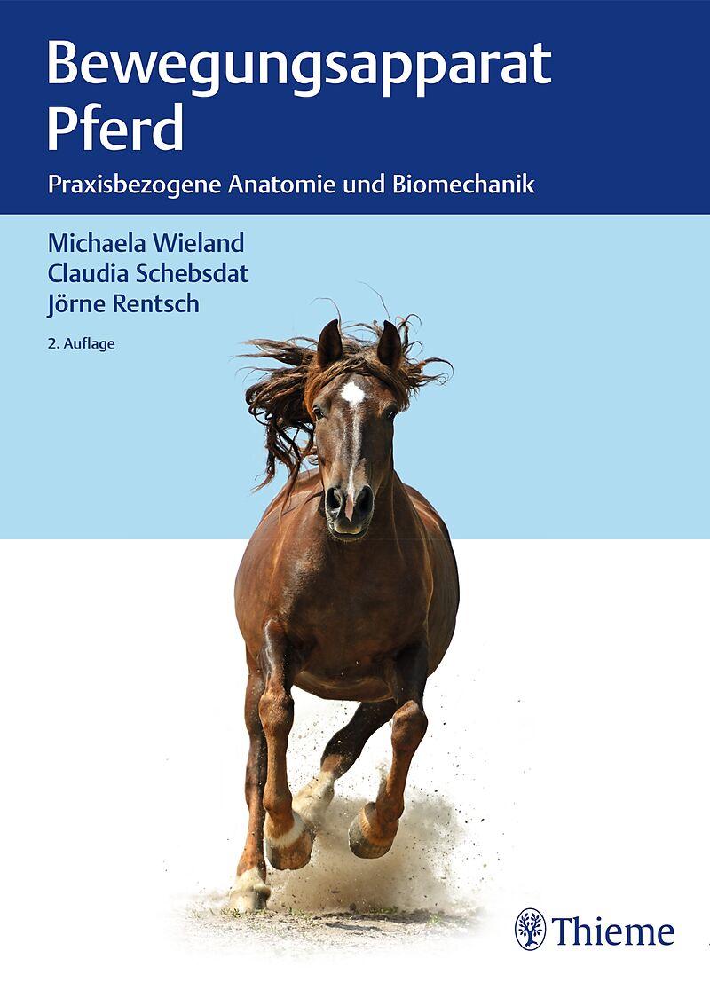 Bewegungsapparat Pferd - Michaela Wieland, Claudia Schebsdat, Jörne ...
