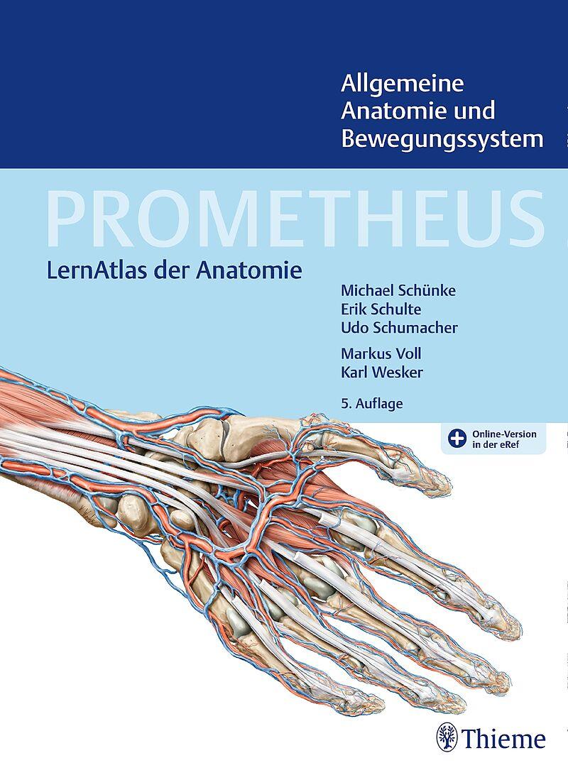 PROMETHEUS Allgemeine Anatomie und Bewegungssystem - - Buch kaufen ...