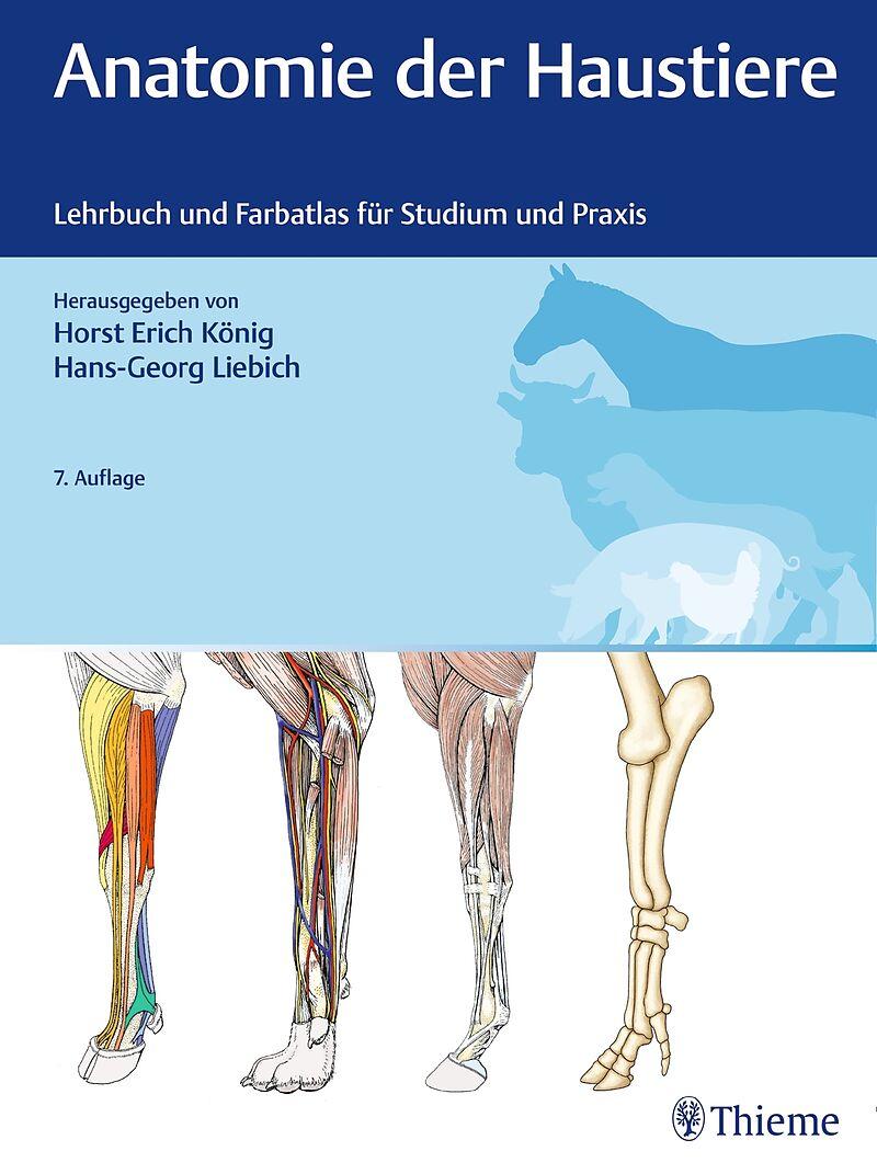 Anatomie der Haustiere - - Buch kaufen | exlibris.ch