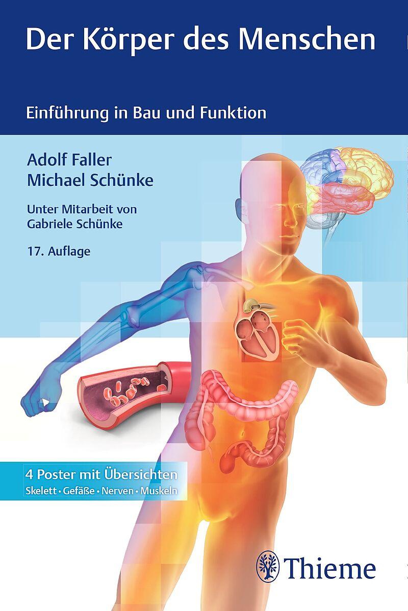Der Körper des Menschen - Adolf Faller, Michael Schünke - Buch ...