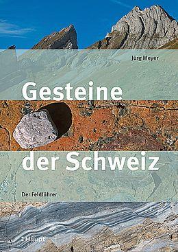 Kartonierter Einband Gesteine der Schweiz von Jürg Meyer