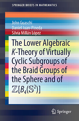 Kartonierter Einband The Lower Algebraic K-Theory of Virtually Cyclic Subgroups of the Braid Groups of the Sphere and of ZB4(S2) von John Guaschi, Daniel Juan-Pineda, Silvia Millán López