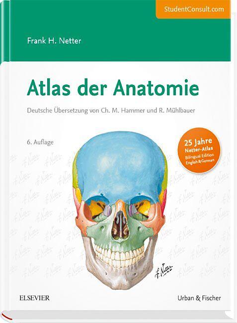 Atlas der Anatomie - Frank H. Netter - Buch kaufen | exlibris.ch