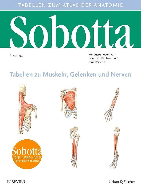 Sobotta Tabellen zu Muskeln, Gelenken und Nerven - Friedrich Paulsen ...