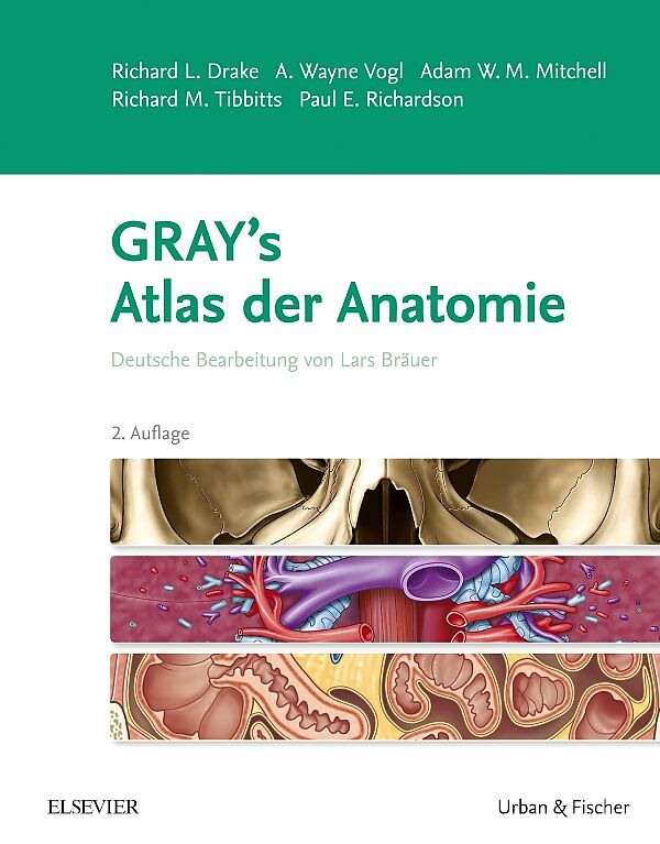 Gray\'s Atlas der Anatomie - Richard L. Drake, A. Wayne Vogl, Adam ...