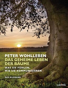 Cover: https://exlibris.azureedge.net/covers/9783/4532/8088/5/9783453280885xl.jpg