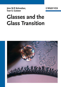 E-Book (pdf) Glasses and the Glass Transition von Ivan S. Gutzow, Oleg V. Mazurin, Jürn W. P. Schmelzer