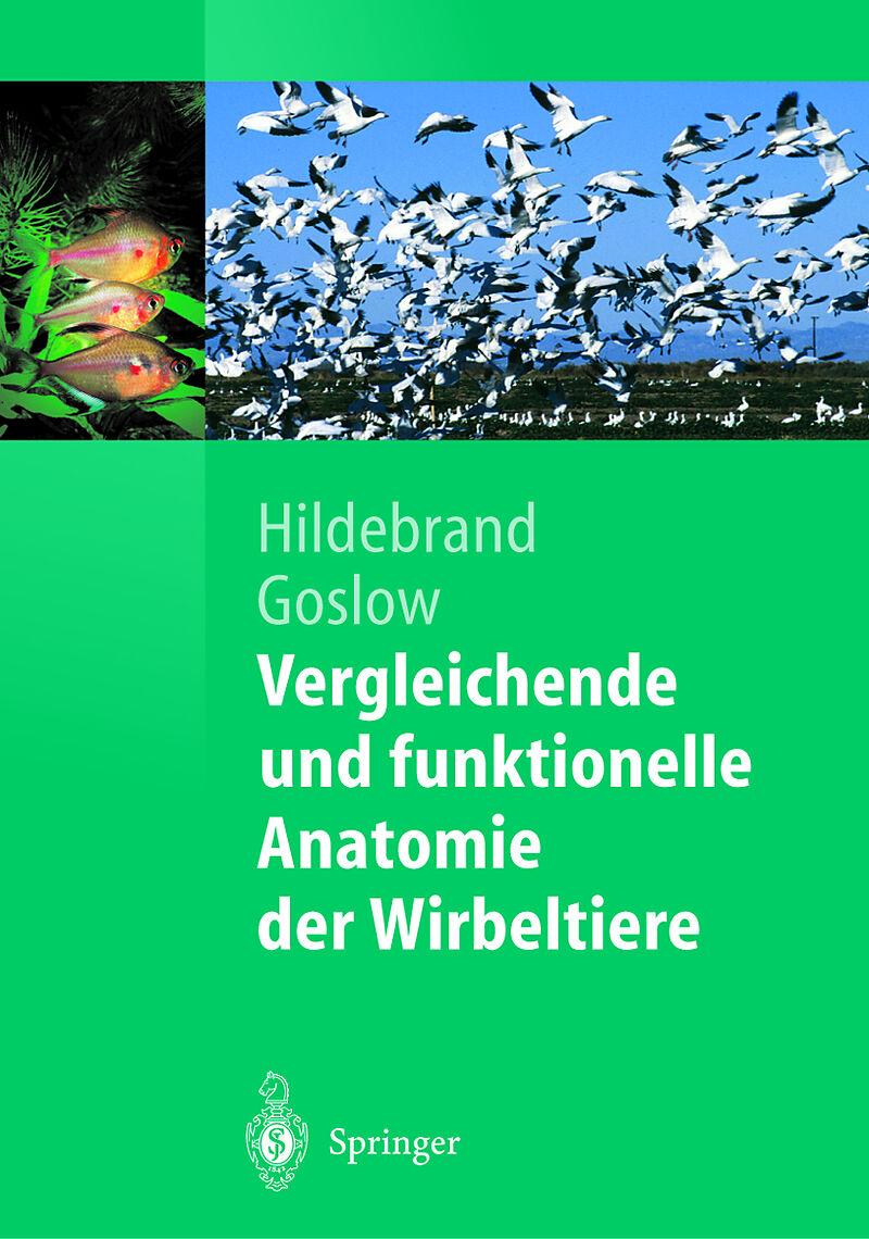 Vergleichende und funktionelle Anatomie der Wirbeltiere - George E ...