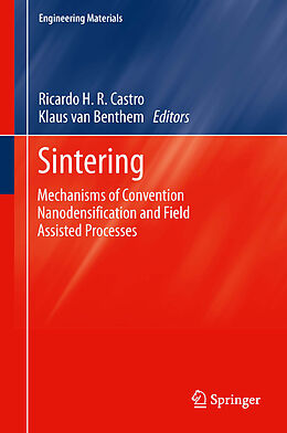 E-Book (pdf) Sintering von Ricardo Castro, Klaus van Benthem