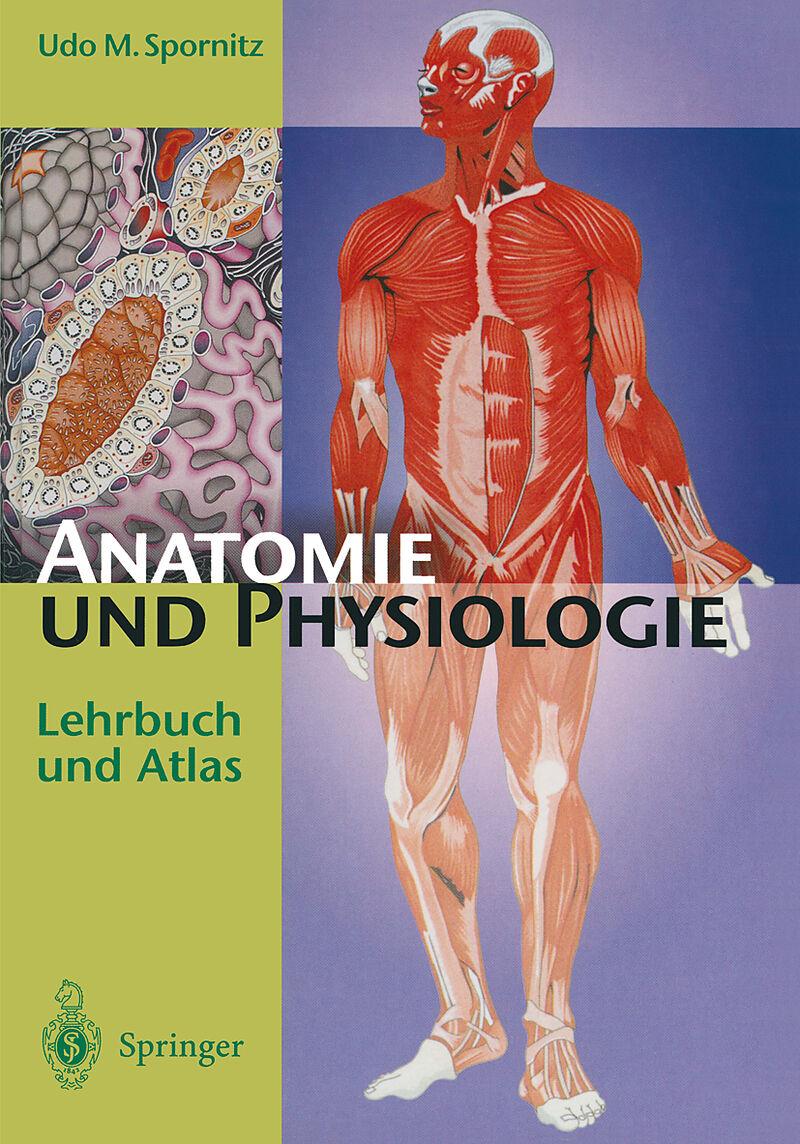 Anatomie und Physiologie - Udo M. Spornitz - Buch kaufen | exlibris.ch