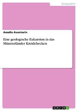 Cover: https://exlibris.azureedge.net/covers/9783/6563/7775/7/9783656377757xl.jpg