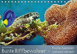 Kalender (Kal) Bunte Riffbewohner - Fische, Anemonen und noch viel mehr (Tischkalender immerwährend DIN A5 quer) von Bianca Schumann