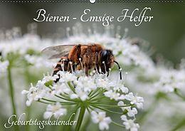 Kalender (Kal) Bienen - Emsige Helfer (Wandkalender immerwährend DIN A2 quer) von Silvia Hahnefeld