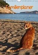 Cover: https://exlibris.azureedge.net/covers/9783/6648/9135/1/9783664891351xl.jpg