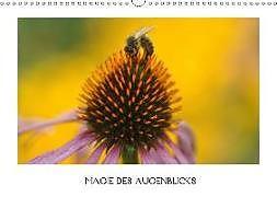 Cover: https://exlibris.azureedge.net/covers/9783/6650/2534/2/9783665025342xl.jpg