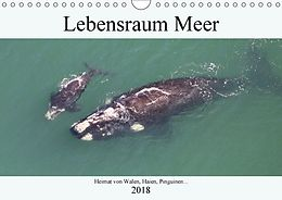 Cover: https://exlibris.azureedge.net/covers/9783/6655/9288/2/9783665592882xl.jpg