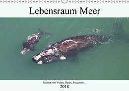 Cover: https://exlibris.azureedge.net/covers/9783/6655/9289/9/9783665592899xl.jpg