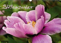 Cover: https://exlibris.azureedge.net/covers/9783/6655/9931/7/9783665599317xl.jpg