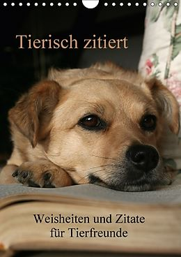 Cover: https://exlibris.azureedge.net/covers/9783/6656/1431/7/9783665614317xl.jpg