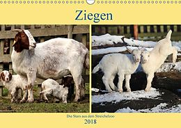Cover: https://exlibris.azureedge.net/covers/9783/6657/7601/5/9783665776015xl.jpg