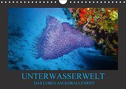 Cover: https://exlibris.azureedge.net/covers/9783/6657/8443/0/9783665784430xl.jpg