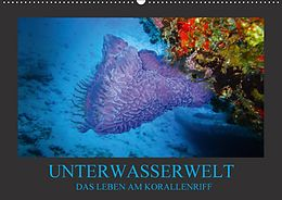 Cover: https://exlibris.azureedge.net/covers/9783/6657/8445/4/9783665784454xl.jpg
