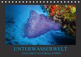 Cover: https://exlibris.azureedge.net/covers/9783/6657/8446/1/9783665784461xl.jpg