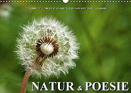 Cover: https://exlibris.azureedge.net/covers/9783/6657/9204/6/9783665792046xl.jpg