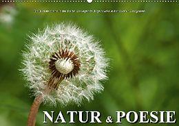 Cover: https://exlibris.azureedge.net/covers/9783/6657/9205/3/9783665792053xl.jpg